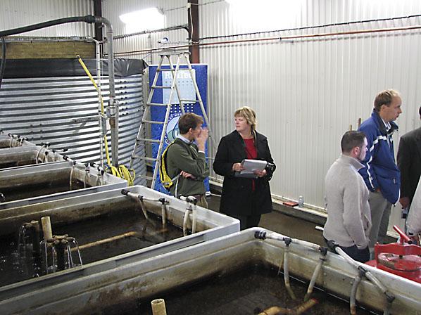 BioBoxarna på Tågerup renar både inkommande Å-vatten samt det recirkulerade dräneringsvattnet