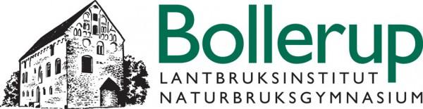 Bollerup logo-liggande